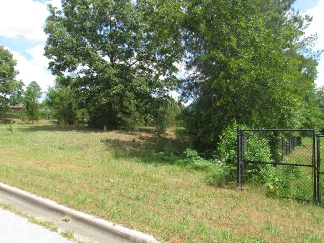 4358 Creekview Drive, Hephzibah, GA 30815 (MLS #441686) :: Melton Realty Partners