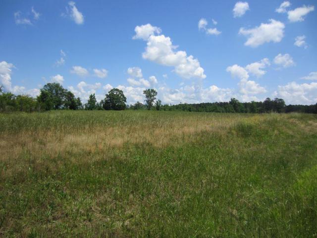 0 Wrightsboro Road, Thomson, GA 30824 (MLS #441955) :: Melton Realty Partners