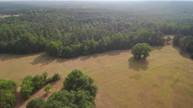 00 Appling Harlem Hwy, Appling, GA 30802 (MLS #442365) :: Shannon Rollings Real Estate