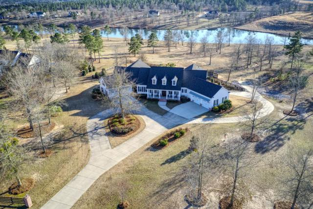 431 Chestnut Brown Court, Warrenville, SC 29851 (MLS #442527) :: RE/MAX River Realty