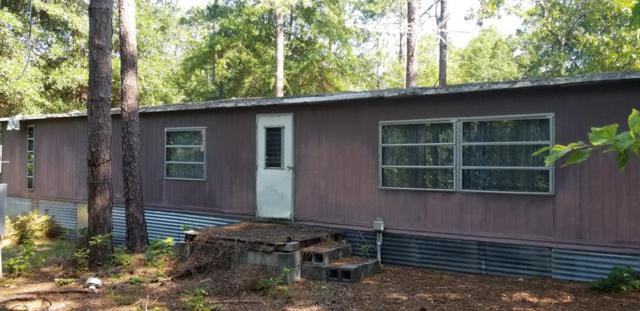 743 Done Roven Road, Augusta, GA 30906 (MLS #442626) :: REMAX Reinvented | Natalie Poteete Team
