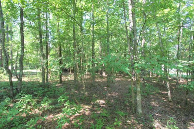 Lot 8 Deer Run Point, Lincolnton, GA 30817 (MLS #443651) :: Young & Partners