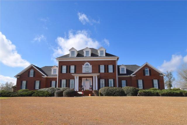 4905 Storey Mill Road, Hephzibah, GA 30815 (MLS #444408) :: Venus Morris Griffin | Meybohm Real Estate