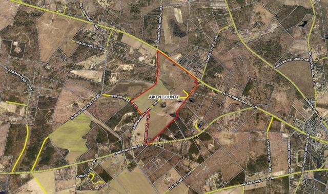 394 Wagon Train Trail, Wagener, SC 29164 (MLS #444824) :: Shannon Rollings Real Estate