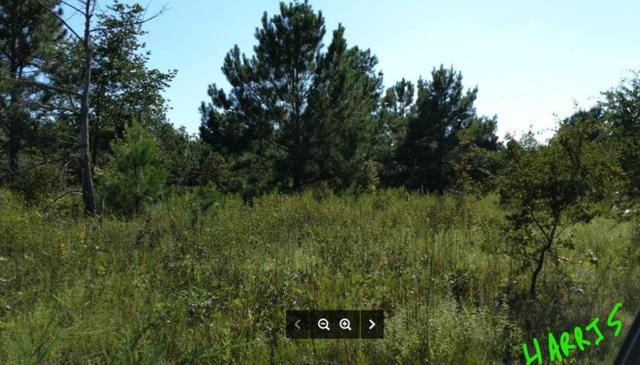 0 Dry Branch Road, Aiken, SC 29803 (MLS #445042) :: Melton Realty Partners
