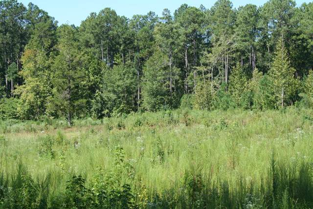 Lot B Dozier Road, Appling, GA 30802 (MLS #446004) :: Melton Realty Partners