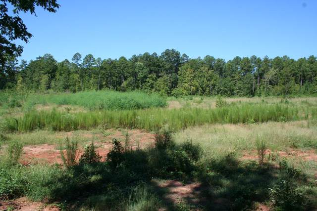Lot D Dozier Road, Appling, GA 30802 (MLS #446006) :: Melton Realty Partners
