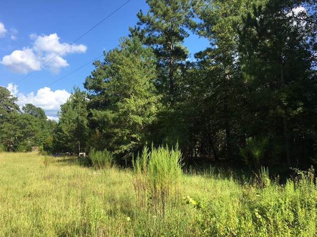 3138 Dearing Acres Road, Dearing, GA 30808 (MLS #446133) :: Melton Realty Partners