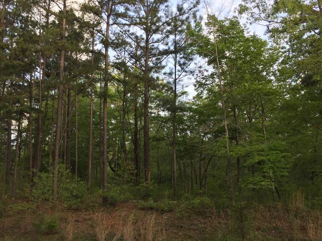 Lots6&7B Plantation Point, Lincolnton, GA 30817 (MLS #446270) :: Young & Partners