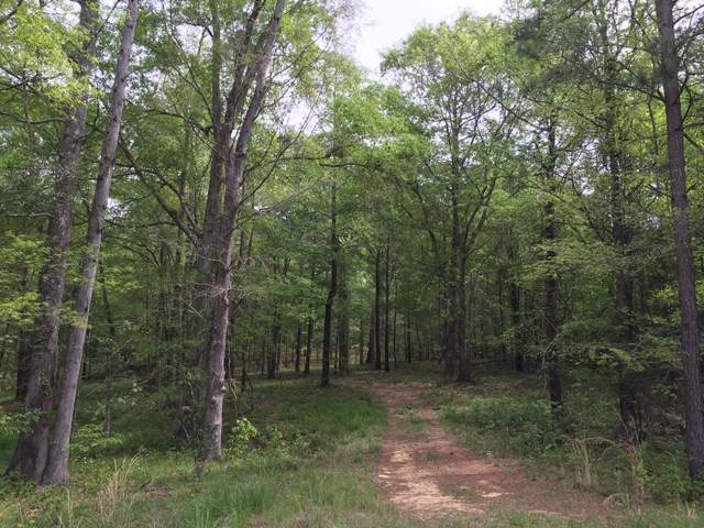 3.78 Ac Morningside Drive, Lincolnton, GA 30817 (MLS #447870) :: The Starnes Group LLC