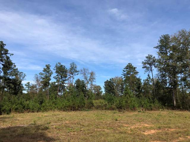 59.65 Ac White Rock Road, Lincolnton, GA 30817 (MLS #447871) :: REMAX Reinvented | Natalie Poteete Team