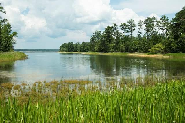 1422 Rock Point Cove, Tignall, GA 30668 (MLS #448016) :: Shannon Rollings Real Estate