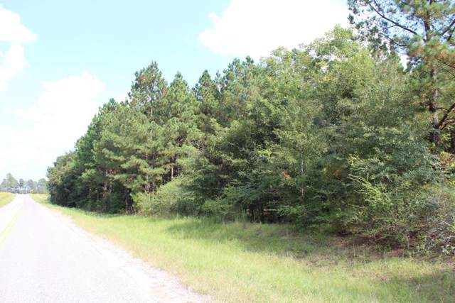 10 & 11 Bailey Road, Vidette, GA 30434 (MLS #448117) :: Shannon Rollings Real Estate