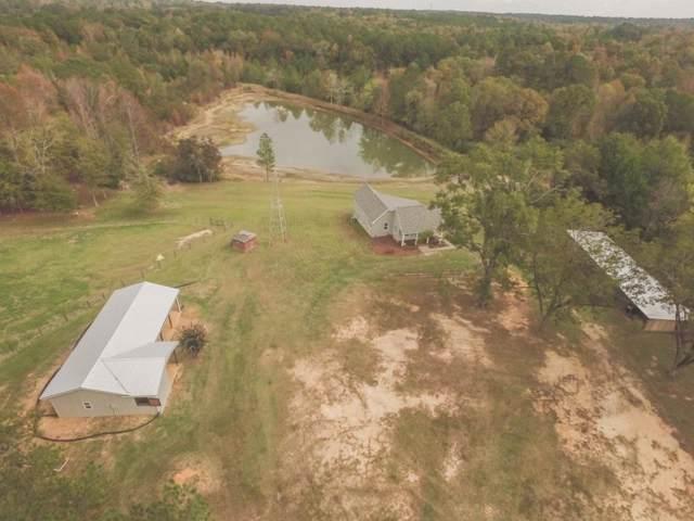 39 Pine Log Trail, Johnston, SC 29832 (MLS #448611) :: Venus Morris Griffin | Meybohm Real Estate