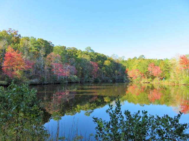 Lot 6 Shadowood Drive, McCormick, SC 29835 (MLS #448657) :: Shannon Rollings Real Estate