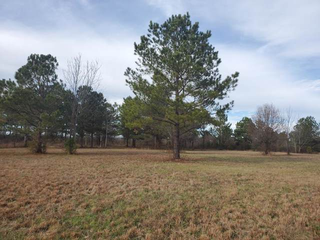 111 Kim Court, Blythe, GA 30805 (MLS #449917) :: Young & Partners