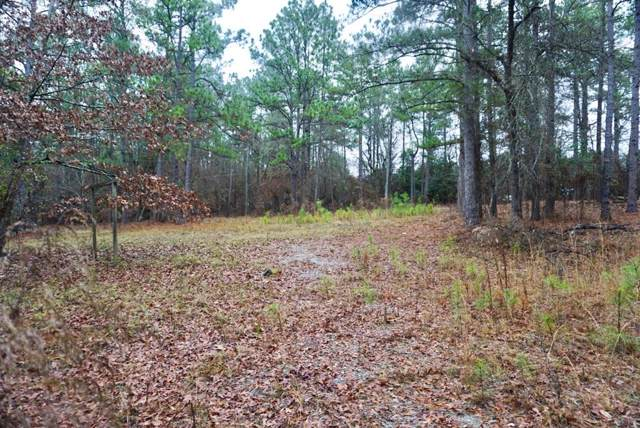652 Al Dempsey Road, Grovetown, GA 30813 (MLS #450087) :: Shannon Rollings Real Estate