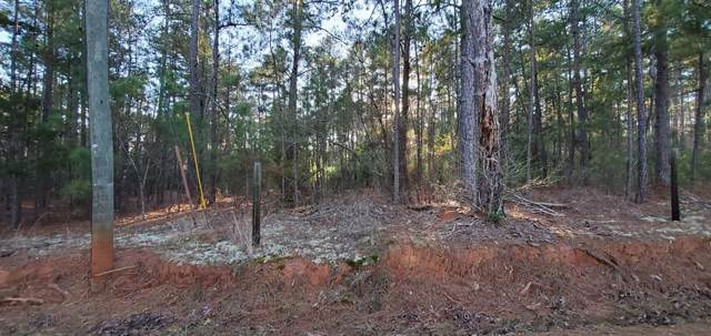 4110 Vern Sikking Road, Appling, GA 30802 (MLS #450826) :: Shannon Rollings Real Estate
