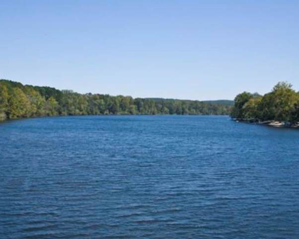 285 Rivers Run, Waynesboro, GA 30830 (MLS #450860) :: Better Homes and Gardens Real Estate Executive Partners