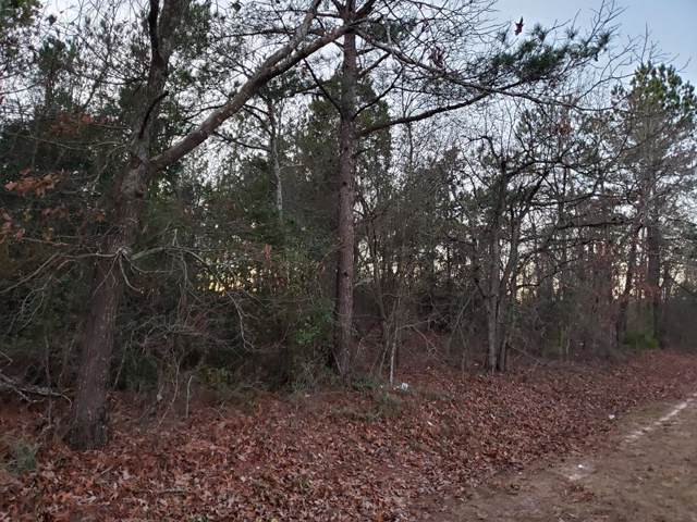 1986 Hephzibah Mcbean Road, Hephzibah, GA 30815 (MLS #451229) :: Shannon Rollings Real Estate