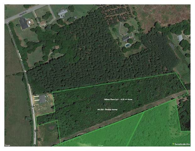 00 Kemp Road, Edgefield, SC 29824 (MLS #451435) :: Shannon Rollings Real Estate