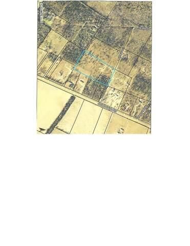 0 Leanne, Waynesboro, GA 30830 (MLS #452005) :: Young & Partners