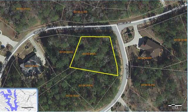 242 Amelia  Drive, McCormick, SC 29835 (MLS #452232) :: Better Homes and Gardens Real Estate Executive Partners