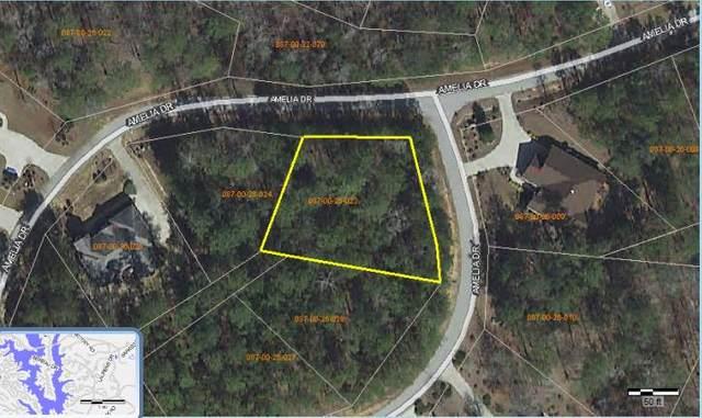 242 Amelia  Drive, McCormick, SC 29835 (MLS #452232) :: Shannon Rollings Real Estate