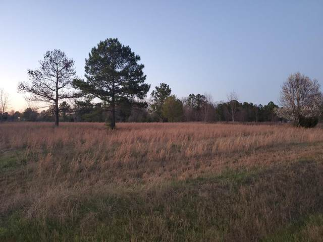 3581 Highway 88, Blythe, GA 30805 (MLS #452416) :: Young & Partners