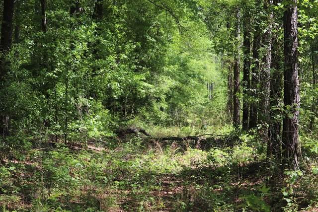 0 Pine Needle Road, Hephzibah, GA 30815 (MLS #454176) :: REMAX Reinvented | Natalie Poteete Team