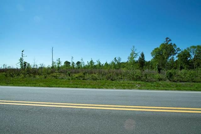 006 Highway 171, Bartow, GA 30413 (MLS #454759) :: Young & Partners