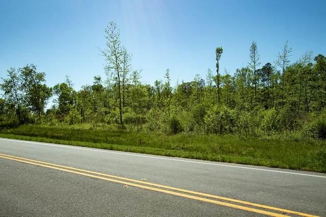 008 Highway 171, Bartow, GA 30413 (MLS #454764) :: Young & Partners