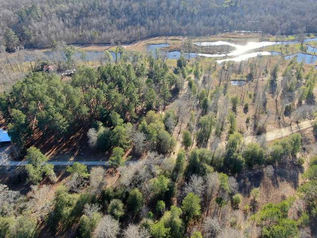 2 Tinkers Creek Trail, Hephzibah, GA 30815 (MLS #454953) :: Shannon Rollings Real Estate