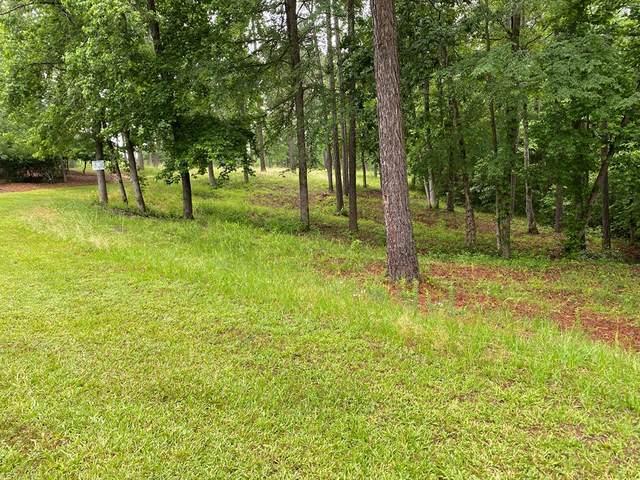 0 Savannah Road, Lincolnton, GA 30817 (MLS #455873) :: Shannon Rollings Real Estate