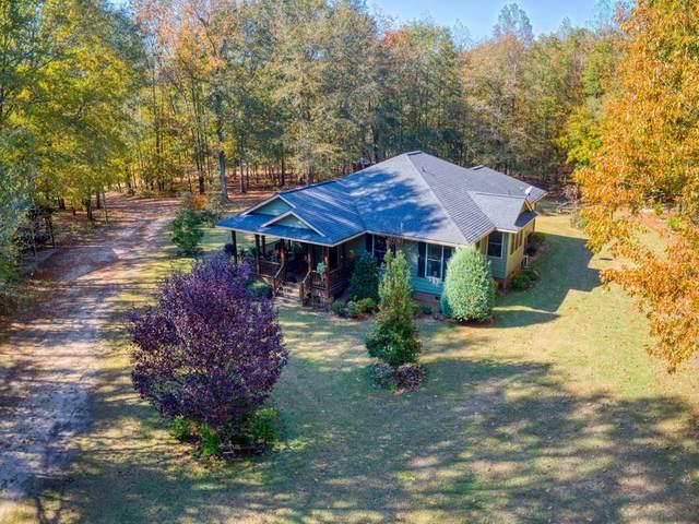 9144 River Road, MItchell, GA 30820 (MLS #456245) :: Melton Realty Partners