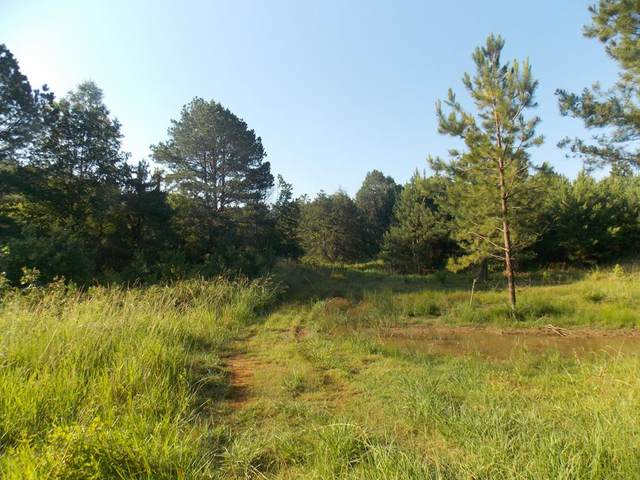 0 Double Branches Road, Lincolnton, GA 30817 (MLS #456895) :: Melton Realty Partners