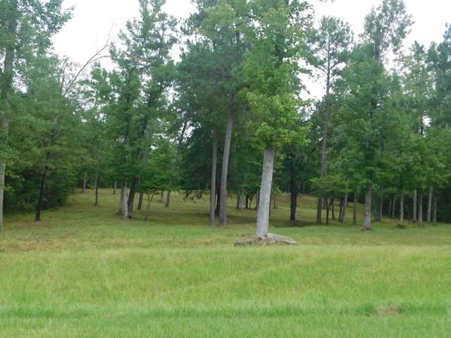5 Savannah Bay Drive, Lincolnton, GA 30817 (MLS #459565) :: Southeastern Residential