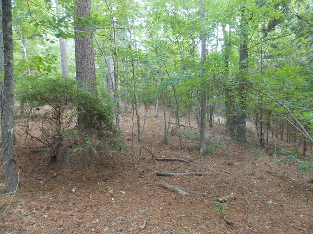 00 Indian Road, Lincolnton, GA 30817 (MLS #459707) :: The Starnes Group LLC