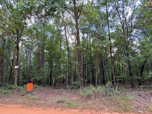 0-2 Piney Woods Road, Lincolnton, GA 30817 (MLS #459820) :: The Starnes Group LLC