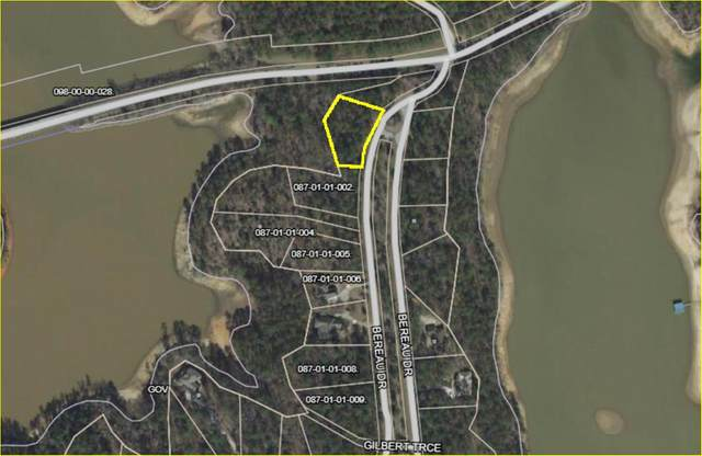 Lot 1-1 Bereau Drive, McCormick, SC 29835 (MLS #460109) :: Melton Realty Partners