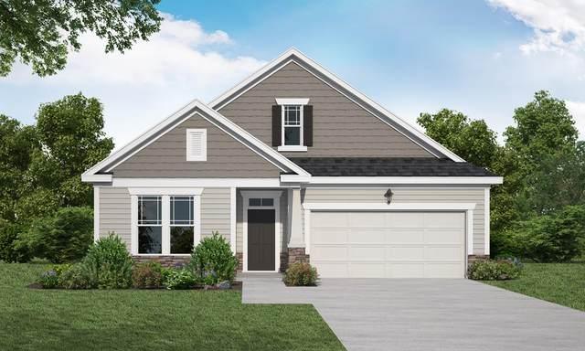 2033 Sinclair Drive, Grovetown, GA 30813 (MLS #460168) :: The Starnes Group LLC