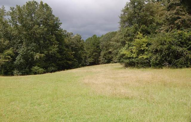 484 Dickson Drive, Evans, GA 30809 (MLS #460524) :: For Sale By Joe | Meybohm Real Estate