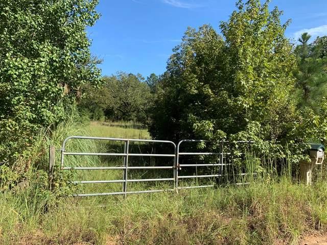 1050 Wilson Road, Warrenton, GA 30828 (MLS #460645) :: The Starnes Group LLC