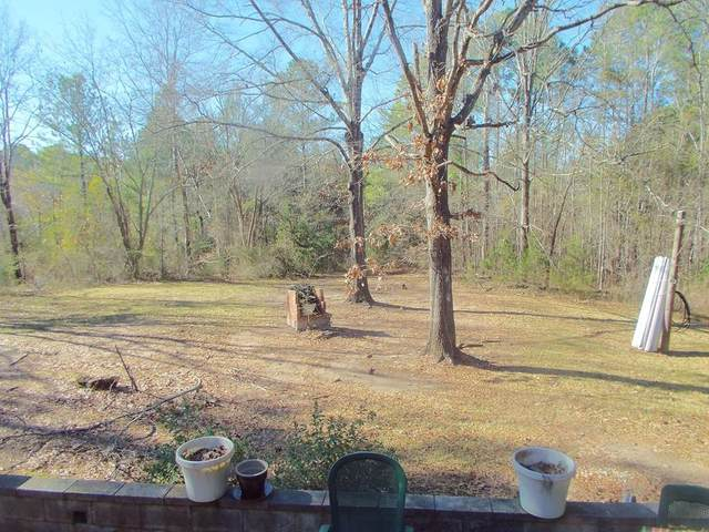 5460 Washington Road, Appling, GA 30802 (MLS #461069) :: For Sale By Joe | Meybohm Real Estate