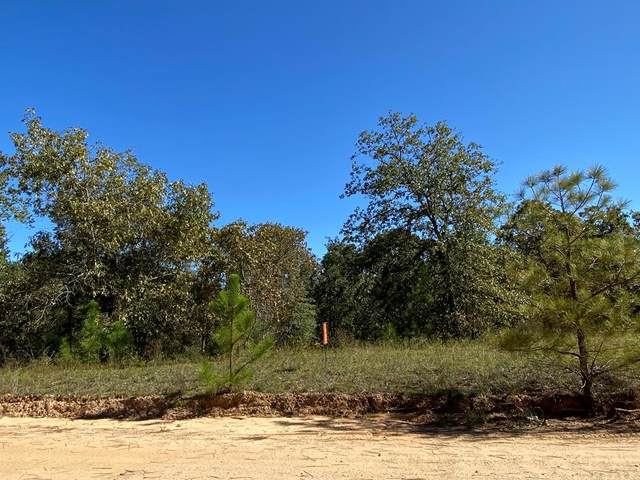 3081 Camp Josey Road, Blythe, GA 30805 (MLS #461075) :: Melton Realty Partners