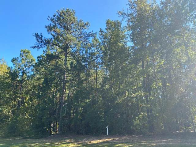 0-M-35 Captain Johnsons Drive, North Augusta, SC 29860 (MLS #461111) :: Melton Realty Partners