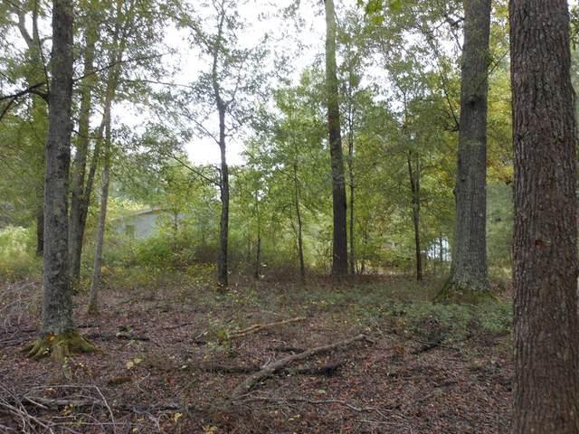 158 Plantation Drive, Waynesboro, GA 30830 (MLS #461424) :: Shannon Rollings Real Estate