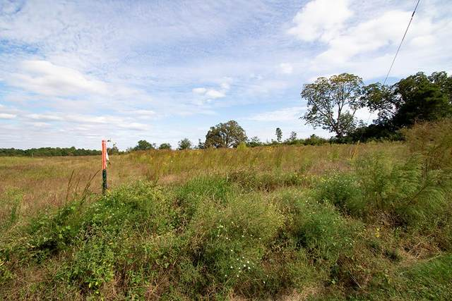0 Old Stapleton Road, Stapleton, GA 30823 (MLS #461449) :: RE/MAX River Realty