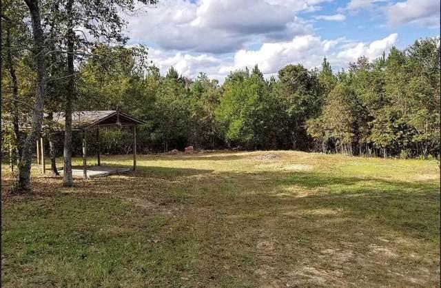1949 Mcdade Farm Road, Hephzibah, GA 30815 (MLS #465054) :: Shannon Rollings Real Estate