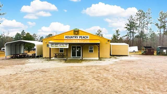 2541 Hancock Landing Road, Waynesboro, GA 30830 (MLS #465076) :: Southeastern Residential